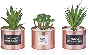 Artificial Succulent Plants for Women Desk - Fake Succulent Plant Set - Office Decor Faux Succulents in Rose Gold Pots - Mini Succulent Decor for Bedroom Bathroom Bookshelf Dorm Accessories 3-Pack