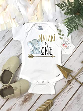 First Birthday Elephant Theme Shirt 1st Personalized Boy Onesie Baby