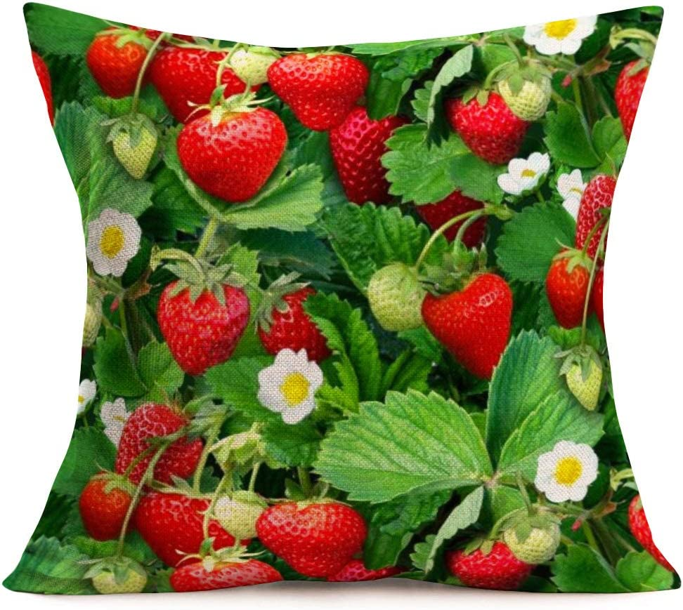 Smilyard Strawberry Pattern Watercolor Throw Pillow Covers Cool Sweet Juicy Pieces Fruits Throw Pillow Cover Cotton Linen Food Drink Decor Pillow Case Cushion case for Sofa 18x18 Inch (Ww 04)
