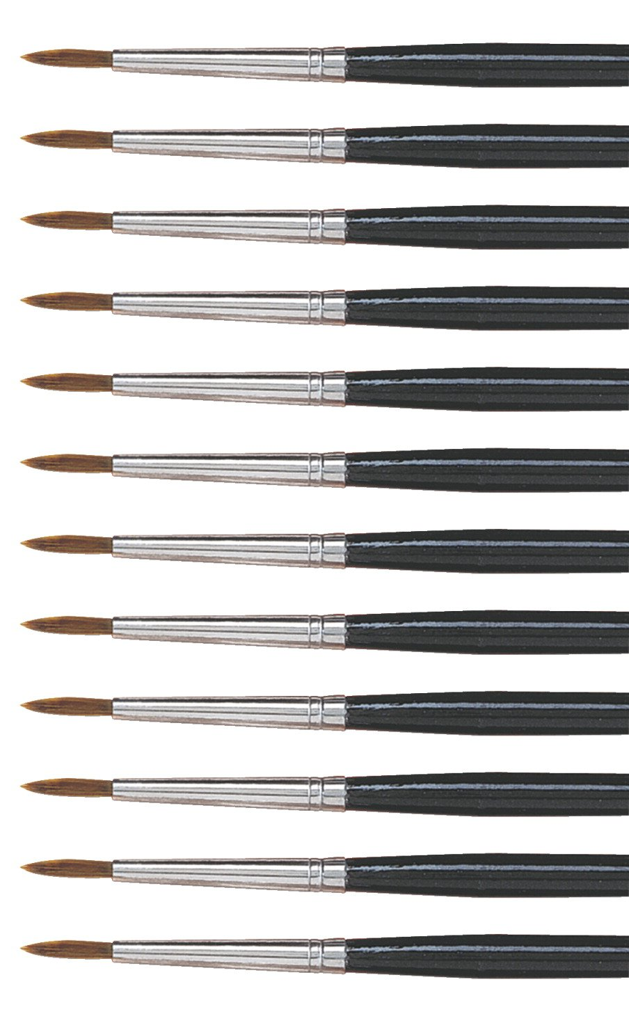 Dynasty 5800 Round Camel Hair Short Enameled Wood Handle Watercolor Paint Brush, Size 5, 11/64 in Hair, Black, Pack of 12 by DYNASTY