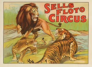 product image for Sells Floto Circus (3 big cats) Vintage Poster USA (12x18 Art Print, Wall Decor Travel Poster)