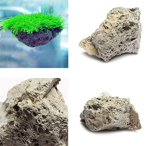 Pak523 - Piedra de pómez para Acuario, pecera, Acuario, Piedra Flotante de Musgo