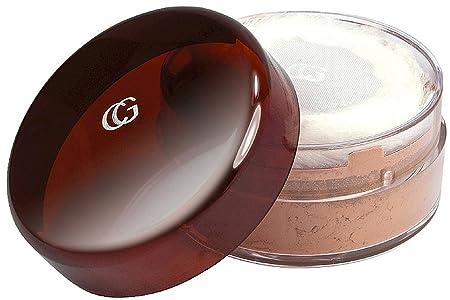 CoverGirl Professional Loose Powder, Translucent Honey 120 0.70 oz Pack of 6