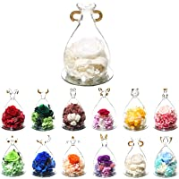 12 Constellation Aquarius Birthday Gift Forever Rose - Never Withered Roses Forever Flower Eternal Flower Rose Handmade…