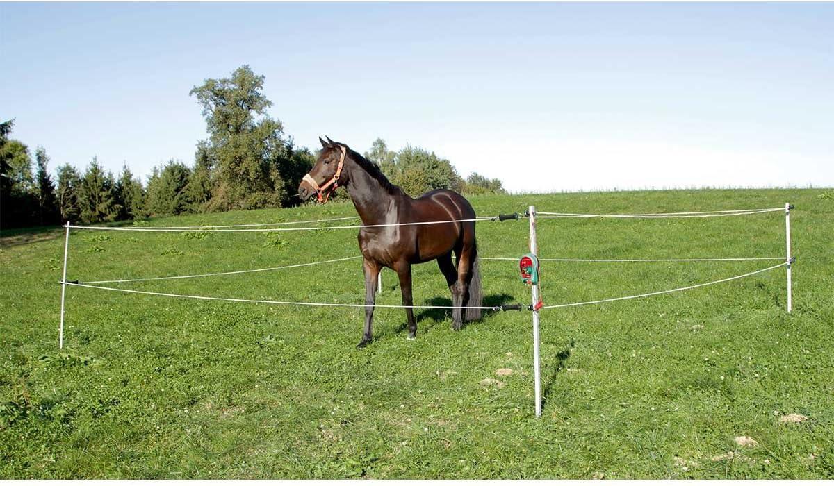 Recinto Elettrico per Cavalli Portatile
