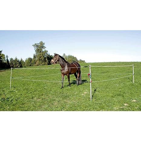 Recinzioni Elettriche Per Cavalli.Recinto Elettrico Per Cavalli Portatile Amazon It Sport E
