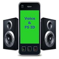 Voice Full Screen Caller ID