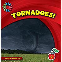 Tornadoes! (21st Century Basic Skills Library: Natural Disasters)
