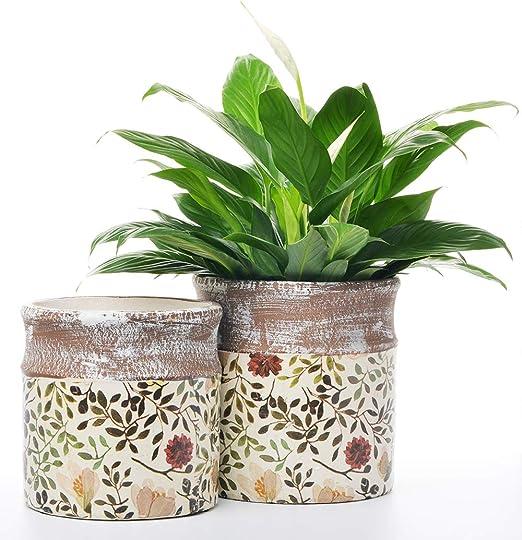 Maceta de cerámica rústica para jardín, 2 unidades para interior y exterior, diseño vintage: Amazon.es: Jardín