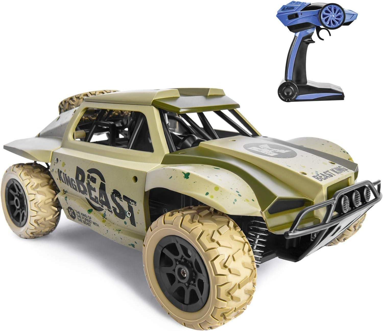 S2F5 25 kmh 4WD alta velocidad RC Car 4x4 pie grande todo terreno de competición del control remoto del vehículo verde camuflaje al aire libre RC Off Road Auto eléctrico recargable del juguete del coc