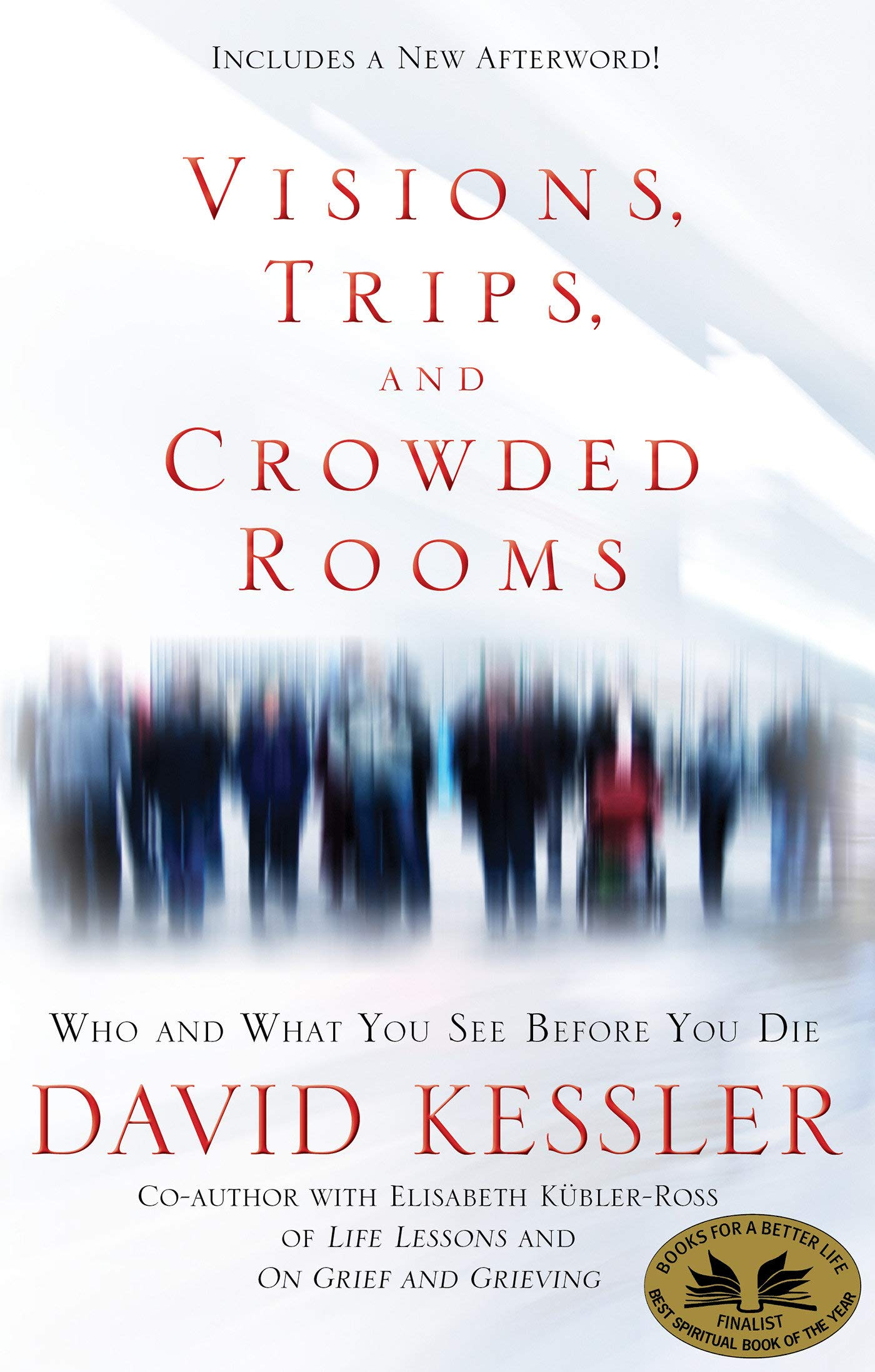 Download Visions, Trips, and Crowded Rooms: Who and What You See Before You Die pdf