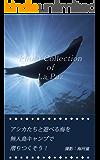 Photo Collection of La Paz: アシカたちと遊べる海を無人島キャンプで潜り尽くそう!