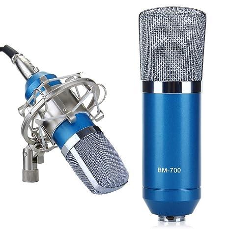 Amazon.com: BW® BM-700 Micrófono de estudio profesional ...