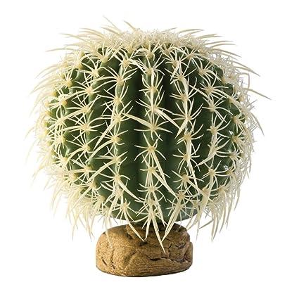 Amazon Com Exo Terra Barrel Cactus Terrarium Plant Medium Pet
