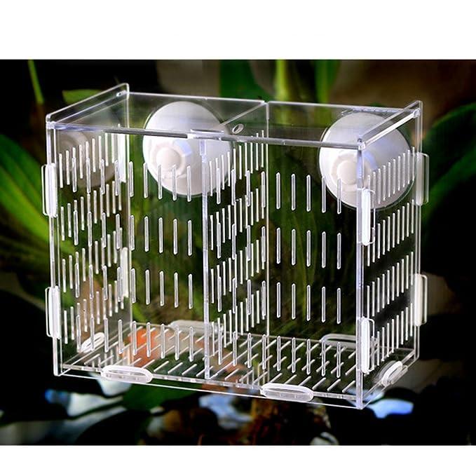 Homyl 2 Pcs Caja de Aislamiento Tanques de Peces Accesorios Herramineta Fácil Instalación de Pecera Elegante: Amazon.es: Productos para mascotas