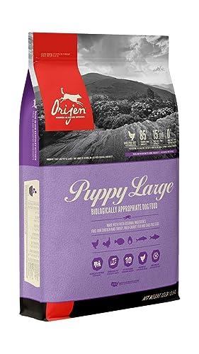 Orijen Puppy Large Review
