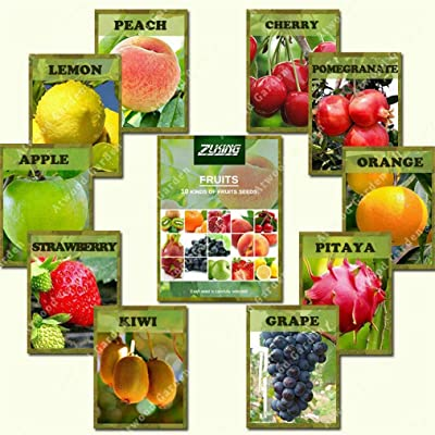 550 Fruit Organic Mixed Tree Seeds Delicious Plant Bonsai for Home and Garden : Garden & Outdoor