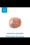 Anatomy flashcards: Female breast: Learn all organs, arteries and veins on the go (Kenhub Flashcards Book 78)