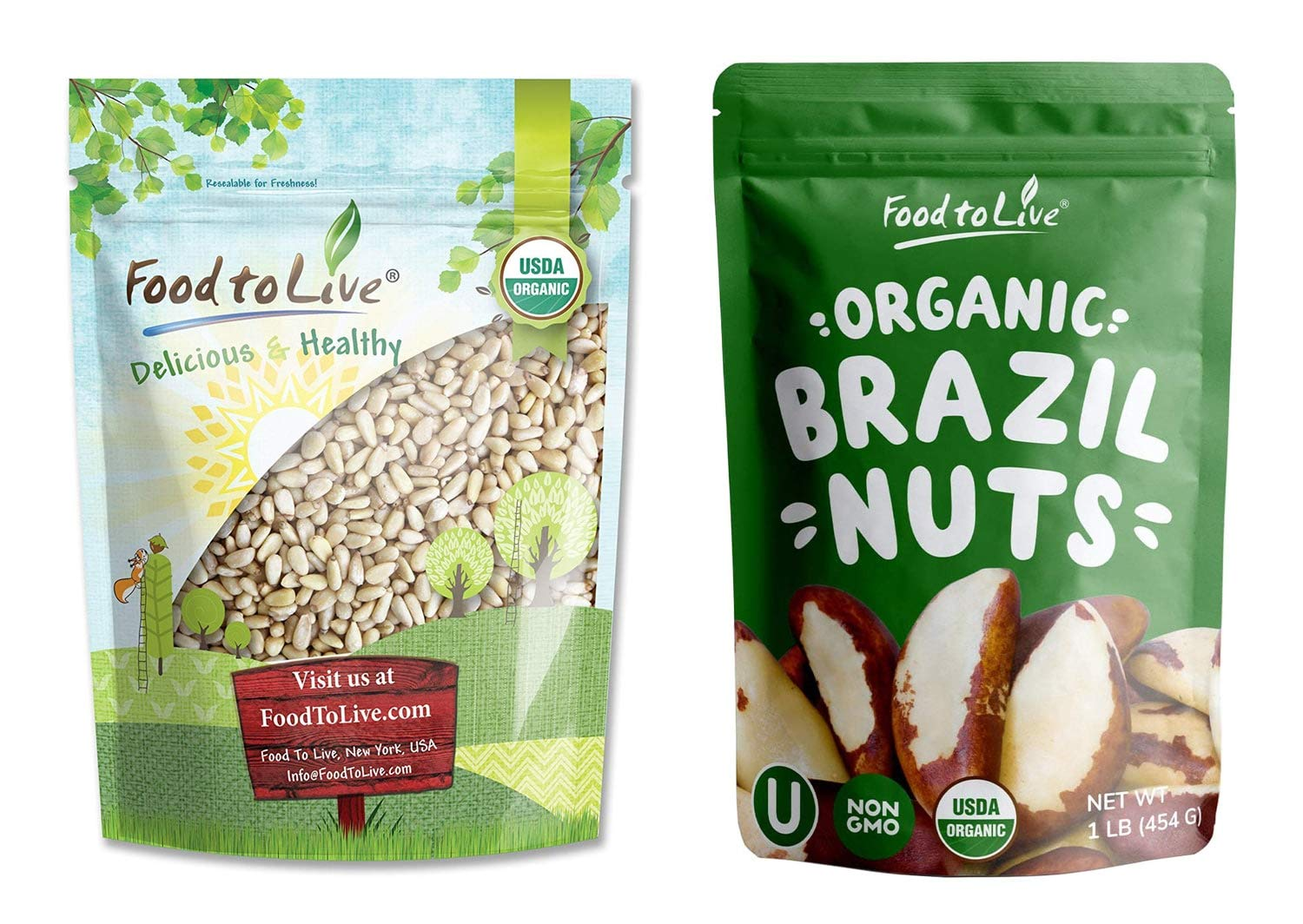Organic Pine and Brazil Nuts Bundle- Organic Pine Nuts / Pignolias, 1 Pound and Organic Brazil Nuts, 1 Pound - Non-GMO, Kosher, Raw, Vegan