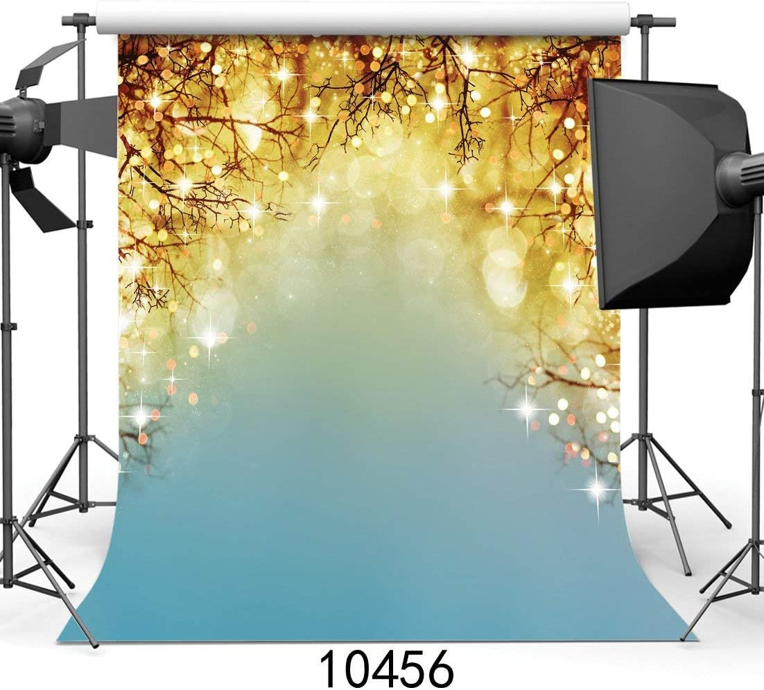 GoHeBe 10x10ft Vinyl Photography Backdrops Spot Background for ...