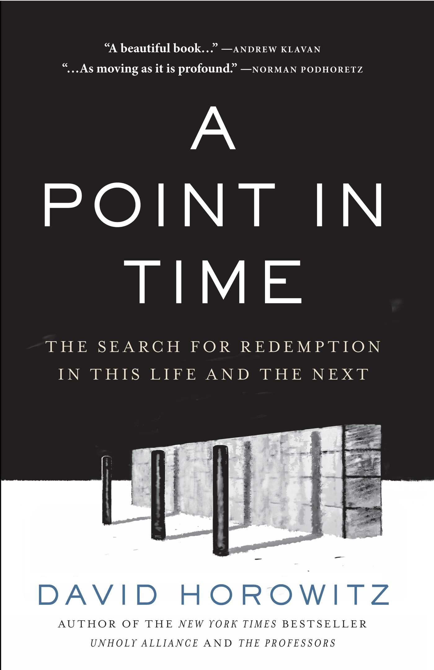 Download A Point in Time: The Search for Redemption in This Life and the Next pdf