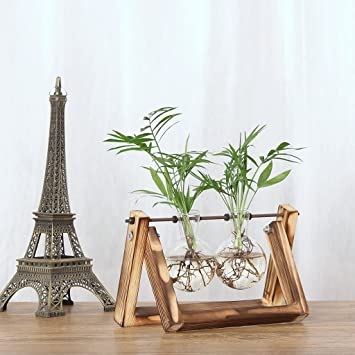 Amazontakefuns 花瓶 水耕栽培 ガラス製 木製 一輪挿し 部屋飾り 人気