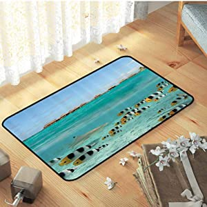Ocean Decor Collection Welcome Door Mat Blacktip Reef Shark Chasing Fish in Shallow Clear Water Lagoon of Bora Bora an Island Picture Sofa Area Rug Girls Rooms Kids Rooms Nursery, W15 x L23