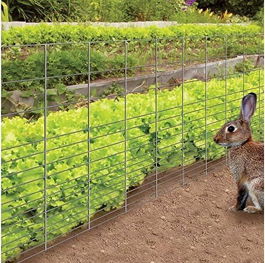 Steel  Poultry Netting  Yes W 25 ft Garden Zone  36 in