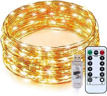 TaoTronics 33ft 100 LEDs USB Powered Warm White LED String Lights