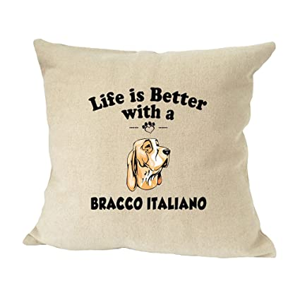 Amazon.com: BRACCO ITALIANO DOG Life Better Sofa Bed Home ...