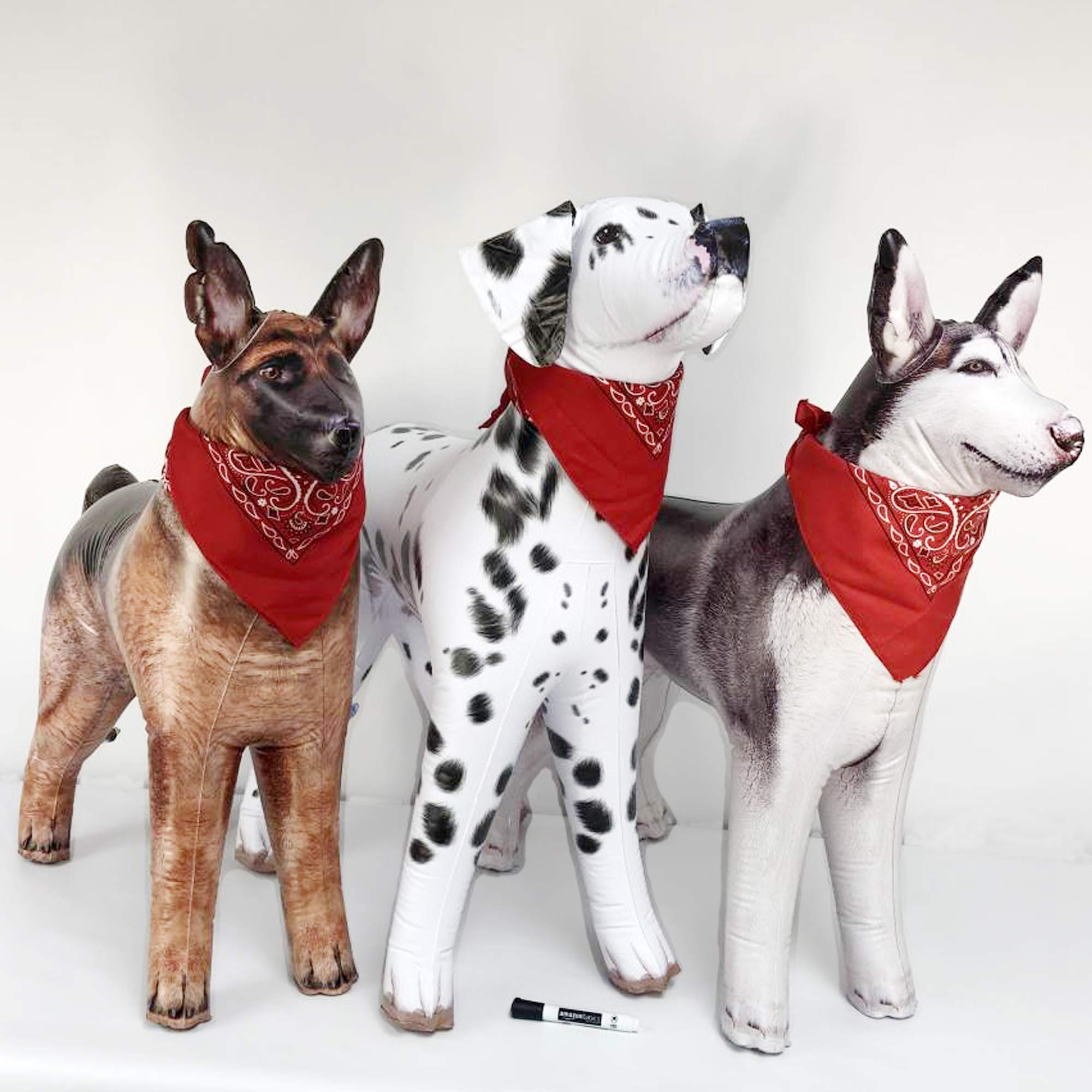 Jet Creations Inflatable Dalmatian Dog Husky German Shepherd 3 Pack Inflatable Stuffed Animal Plush Plus 3 Bandana 1 Marker. Size 32 to 41 inch Long.  JC-3DOGZZ by Jet Creations