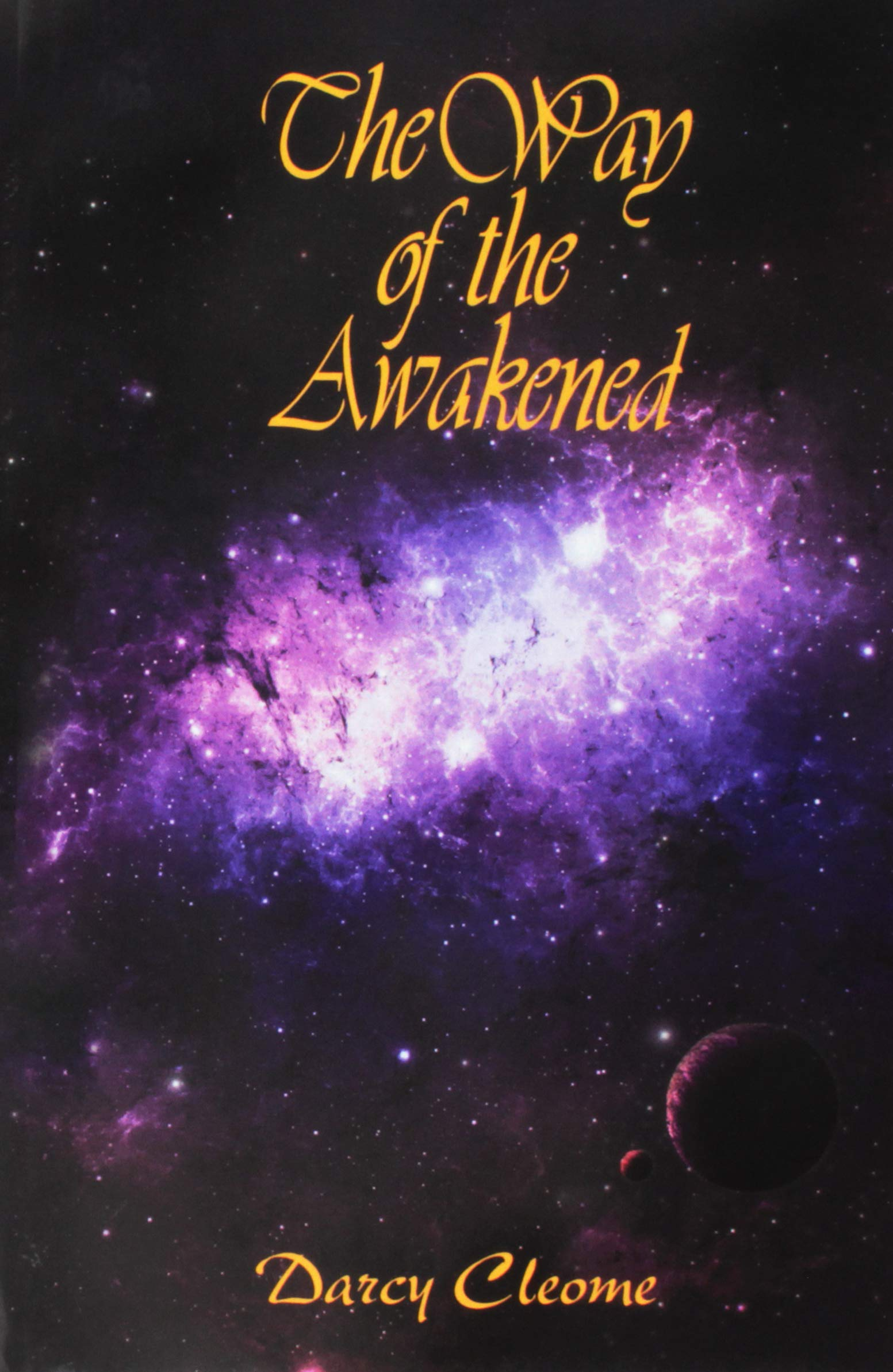 Read Online The Way of the Awakened PDF
