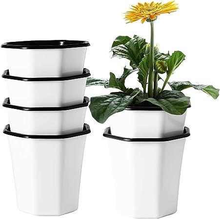 T4U Plastic self watering Planter product image