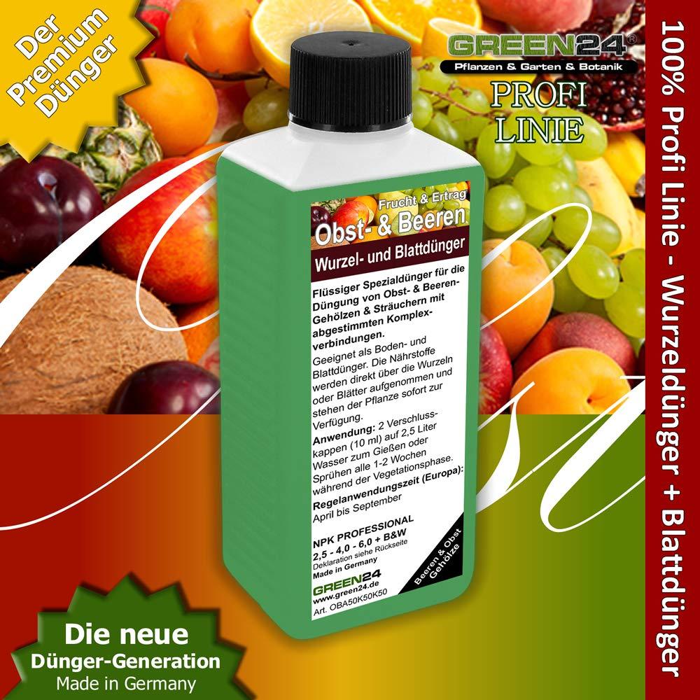 Green24 Obstbaum Beerenstrauch Dunger Hightech Dungen Von Obst Und