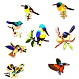 Segolike 8 Pieces Assorted Iron On Embroidery Birds Applique Patches
