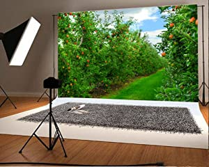 Laeacco 7x5FT Vinyl Backdrop Apple Orchard Photography Background Green Apple Trees Red Ripe Apples Blue Sky Scene Natural Background Children Baby Girls Personal Photo Portraits