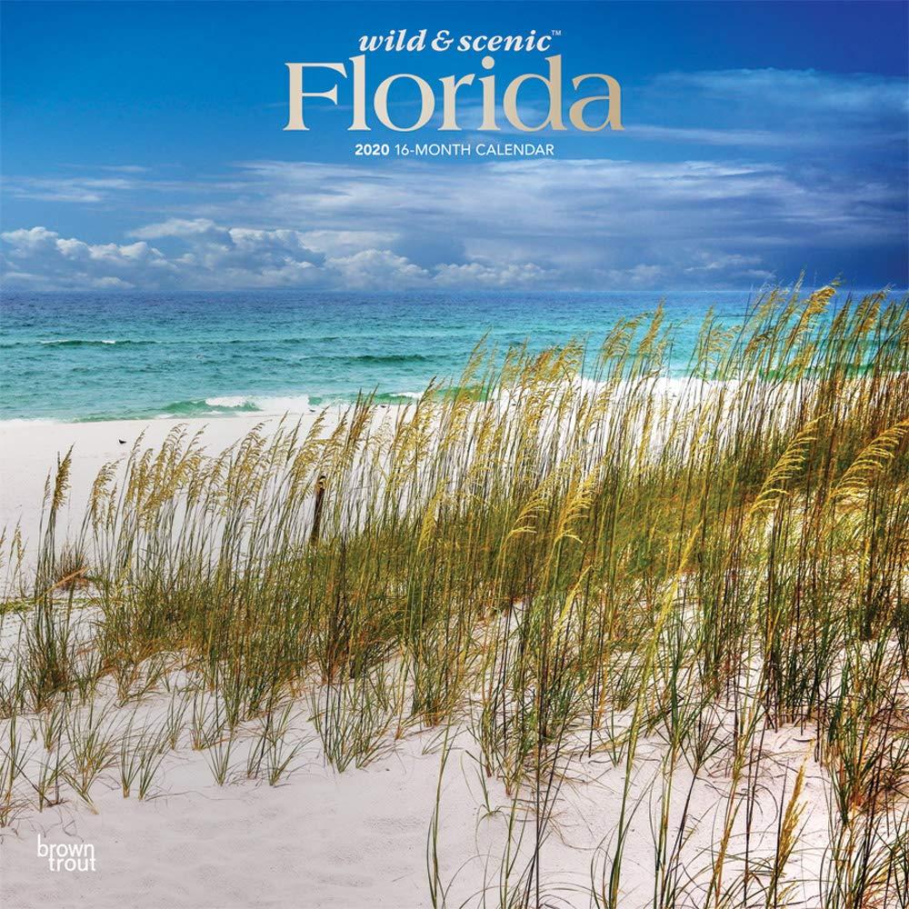 Calendar Florida Coast 2020 Square Foil