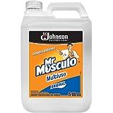 Limpador Mr Músculo Multiuso Professional Original 5L