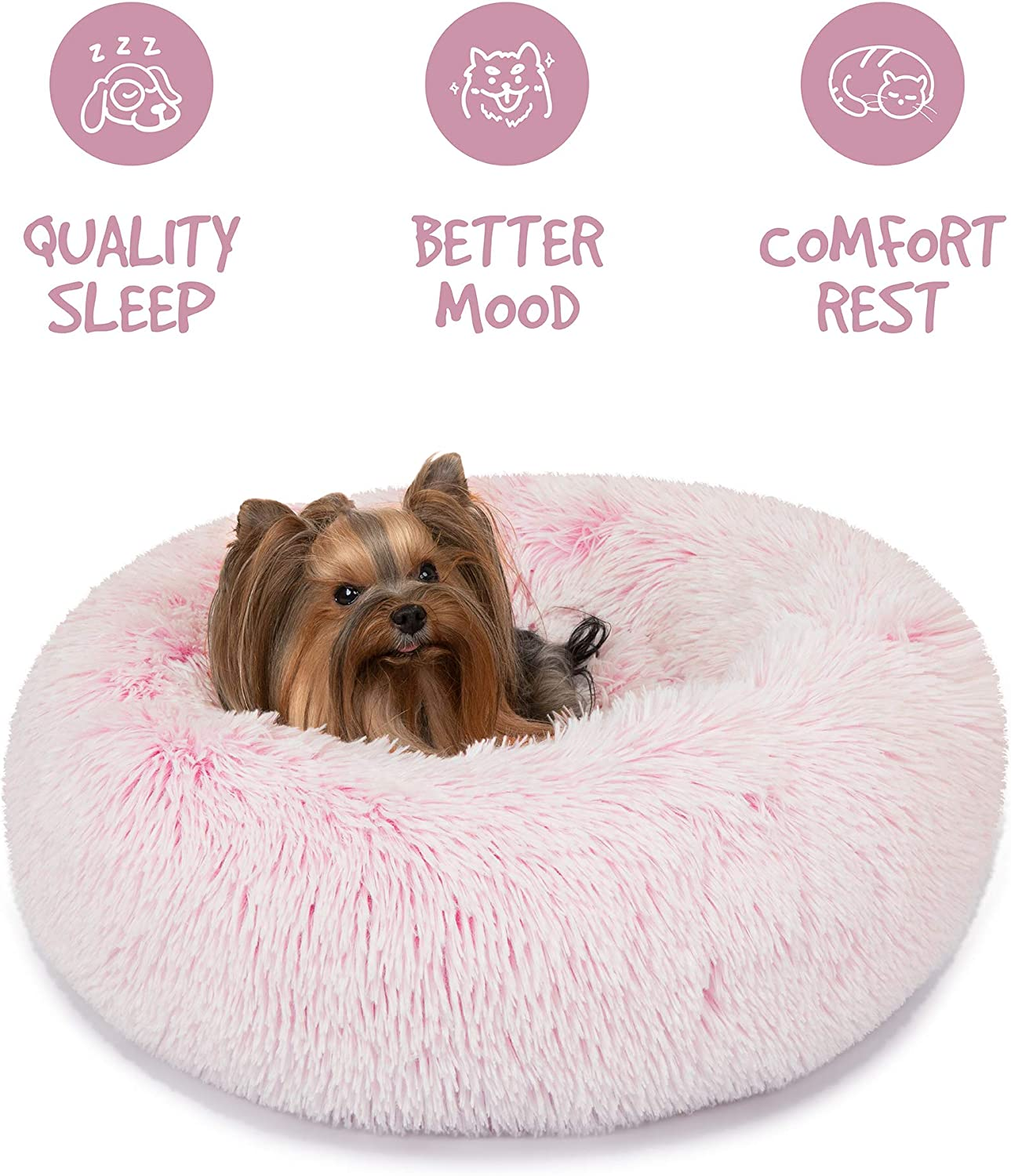 7 Best dog security Bed 2