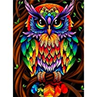 DIY 5D Diamond Painting Kits for Adults & Kids Colorful Owl Full Drill Round Diamond Crystal Gem Arts Painting Perfect…