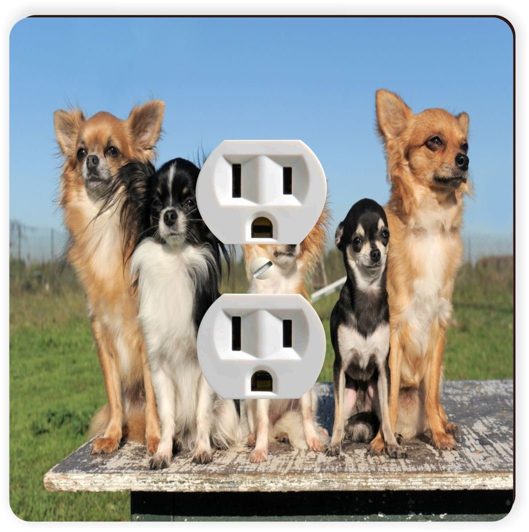 Rikki Knight Chihuahuas Dog Single Outlet Plate
