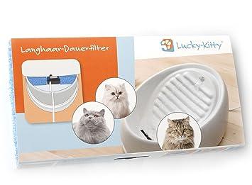 Nuevo: Lucky-Kitty filtro permanente de cabello largo: Amazon.es: Productos para mascotas