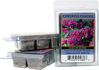 product image for A Cheerful Giver Melts box, Lilacs In Bloom