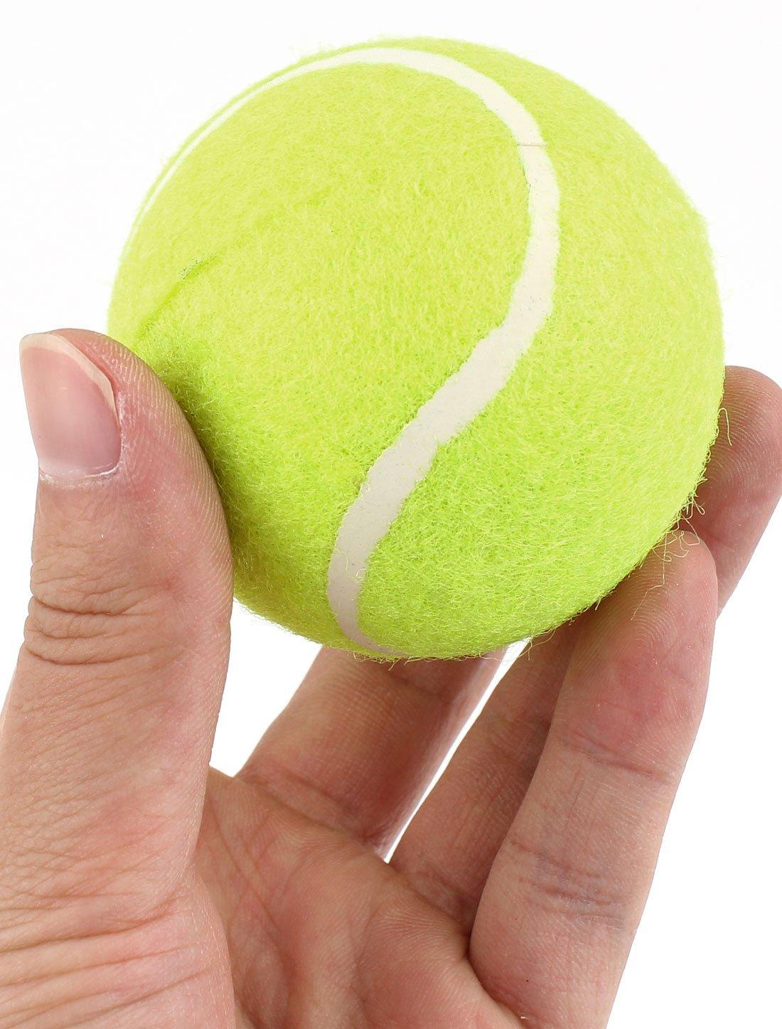 Amazon.com : eDealMax Entrenamiento Deportivo Amarillo Verde Dia 6 cm de espuma PU Pelotas de Tenis 3 piezas : Sports & Outdoors