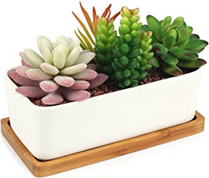 Succulent Planter, Digsky Modern White Ceramic Cactus Flower Pot Plant Pot with Bamboo Tray (Rectangular)