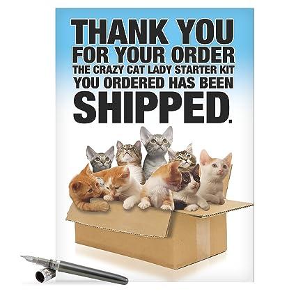 Amazon J8016 Jumbo Funny Birthday Card Cat Lady Starter Kit