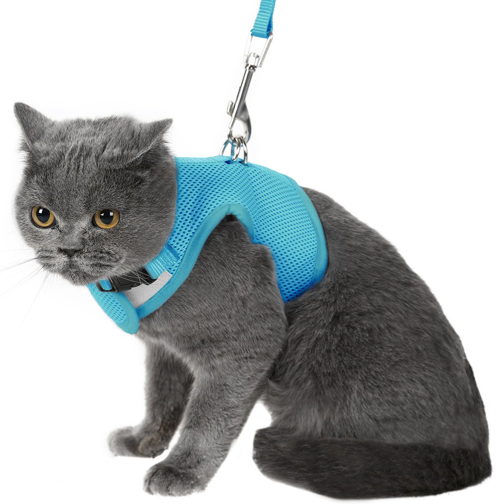 Escape Proof Cat Harness with Leash - Holster Style Adjustable Soft Mesh - Best for Walking Blue Medium
