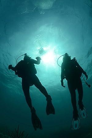 Cressi Octopus para Buceo Ellipse: Amazon.es: Deportes y aire libre