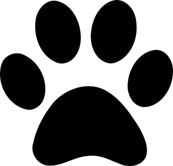 12 X Dog Paw Prints Car Van Decal Sticker Vinyl Amazoncouk Car