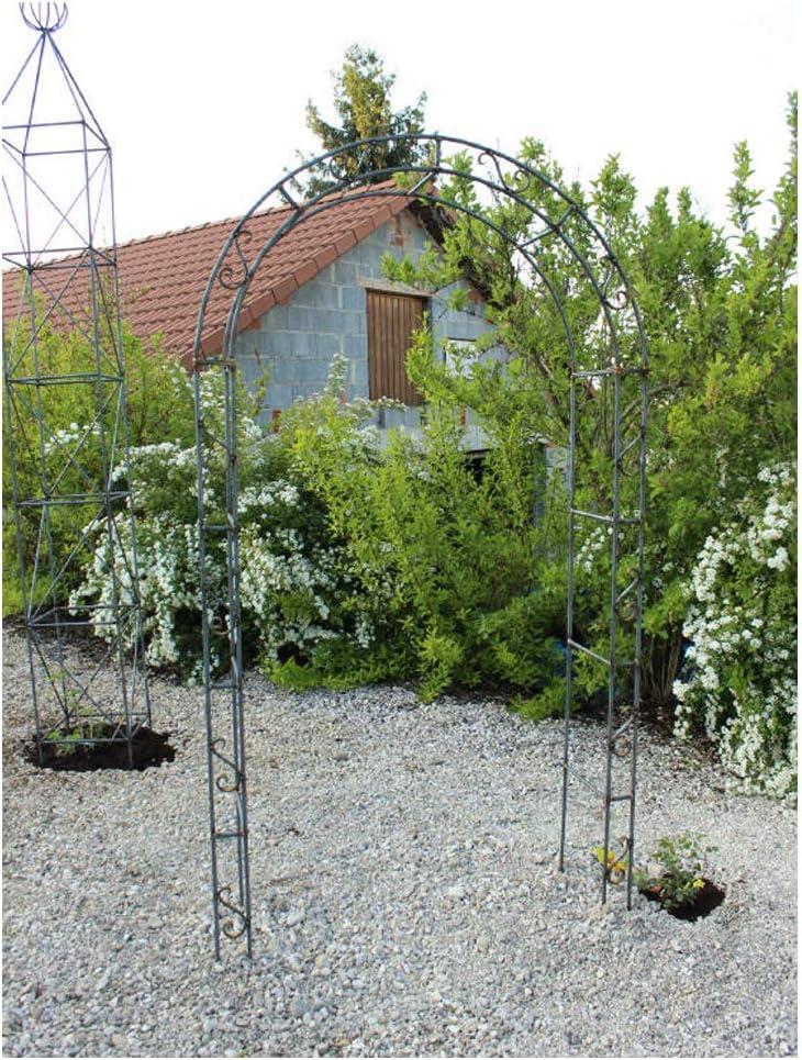 EQT-TEC – Arco para Rosales de jardín, 220 cm, decoración para Plantas: Amazon.es: Jardín